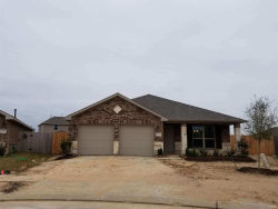 Photo of 3726 E Briarlily Park Circle, Katy, TX 77493 (MLS # 94256647)