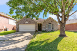 Photo of 23318 Stepinwolf Lane, Spring, TX 77373 (MLS # 94626558)