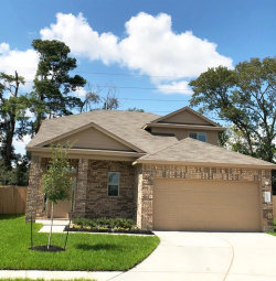 Photo of 1191 Agua Dulce, Channelview, TX 77530 (MLS # 95881673)