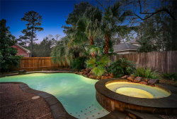 Photo of 22 Vista Mill Place, The Woodlands, TX 77382 (MLS # 96906021)