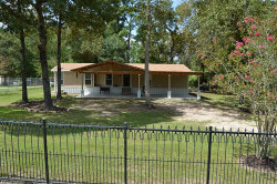 Photo of 15918 Long Neck Drive, Magnolia, TX 77355 (MLS # 97499153)
