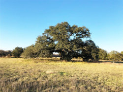Photo of 11476 County Road 365, Louise, TX 77455 (MLS # 17964127)