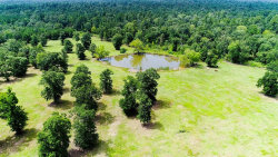 Photo of 113 Acres Ridge View Lane, Huntsville, TX 77340 (MLS # 26204151)