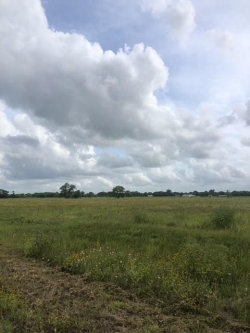 Photo of 7017 County Road 100, Boling, TX 77420 (MLS # 28564118)