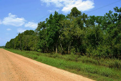 Photo of 00000 Cr 100, Boling, TX 77420 (MLS # 53299704)