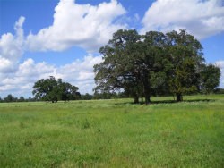 Photo of 11.6ac CR 164, Boling, TX 77420 (MLS # 63160809)