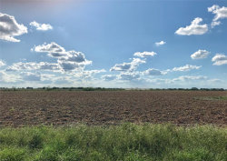 Photo of 1654 County Road 315, Louise, TX 77455 (MLS # 70494852)