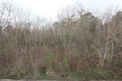Tiny photo for 0000 HWY 3 Highway, Texas City, TX 77591 (MLS # 82602584)