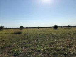 Photo of 2288 County Road 312, Louise, TX 77455 (MLS # 87864064)