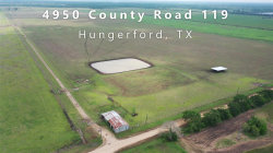 Photo of 4950 County Road 119, Hungerford, TX 77448 (MLS # 968730)