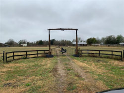 Photo of 9700 Bushnell Road, Needville, TX 77461 (MLS # 18539247)
