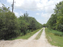Photo of 0 Riverside County Road, Angleton, TX 77515 (MLS # 19069055)