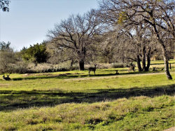 Photo of 17 La Lucita, Horseshoe Bay, TX 78657 (MLS # 27800859)
