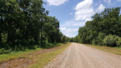 Photo of 0 Laguna Trail, Needville, TX 77461 (MLS # 33643497)