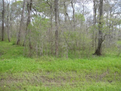 Photo of 0 County Rd 165, Boling, TX 77420 (MLS # 35066090)