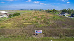 Photo of 9209 Jeske Road, Needville, TX 77461 (MLS # 39373127)