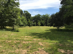 Photo of 00000 Bryan, Boling, TX 77420 (MLS # 39422434)