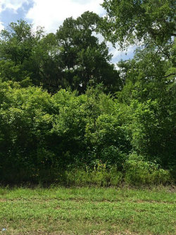Photo of 0 County Rd 165, Boling, TX 77420 (MLS # 4169029)