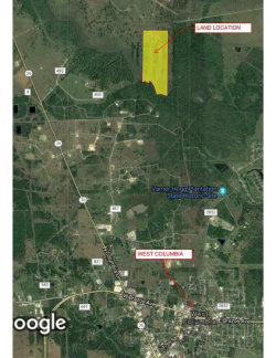 Photo of 0 COUNTY ROAD 483 OFF PVT R, West Columbia, TX 77486 (MLS # 58168999)