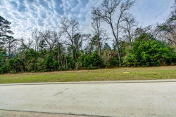 Tiny photo for 67 Hallbrook Way, Spring, TX 77389 (MLS # 60514544)