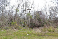 Photo of LOT 31 Highland Shores Road, Highlands, TX 77562 (MLS # 61382065)