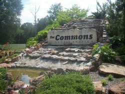 Photo of 0 Commons Scenic View Drive, Huffman, TX 77336 (MLS # 65017105)