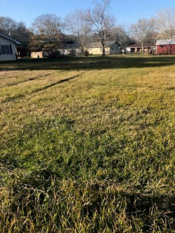 Photo of 00 W Norris, El Campo, TX 77437 (MLS # 6546183)