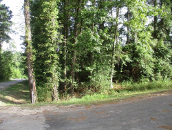 Photo of TBD Lazy Hollow Lane, Onalaska, TX 77351 (MLS # 67268499)