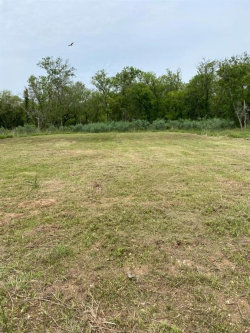 Photo of 33426 Blue Marlin Drive, Richwood, TX 77513 (MLS # 70338772)