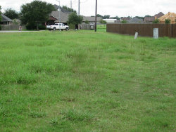 Photo of 3819 Margaret Street, Needville, TX 77461 (MLS # 74660846)