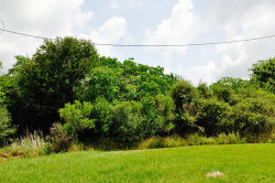 Photo of 0 Melanie Lane, Needville, TX 77461 (MLS # 84796474)