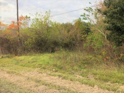 Tiny photo for 6814 Lewis Road, Hitchcock, TX 77563 (MLS # 86331352)