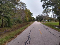 Photo of 0 County Road 893a, Angleton, TX 77515 (MLS # 91414138)