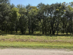 Photo of 31819 Amberjack Trail Drive, Richwood, TX 77515 (MLS # 97957064)