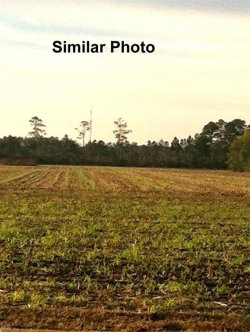 Photo of 877 South Mills Road, Currituck County, NC 27958 (MLS # 10197630)