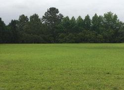 Photo of 110 Meadow Lake Circle, Currituck County, NC 27947 (MLS # 10229964)