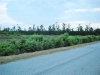 Photo of 75 Ac Wyanoke Trail, Suffolk, VA 23437 (MLS # 10112875)
