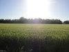 Photo of 19.28 Acres Longstreet Lane, Suffolk, VA 23437 (MLS # 10131692)