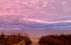 Photo of 2222 Bayberry Street, Virginia Beach, VA 23451 (MLS # 10208026)