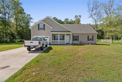 Photo of 366 Nw Backwoods Road, Currituck County, NC 27929 (MLS # 10216788)