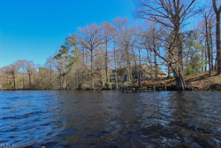 Photo of 138 Knowles Landing, Perquimans County, NC 27944 (MLS # 10254377)