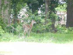 Photo of 39 Huber Road, Newport News, VA 23601 (MLS # 10289232)