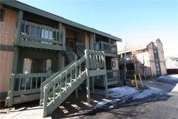 Photo of 760 Blue Jay Road, Unit 27, Big Bear Lake, CA 92315 (MLS # 32000464)