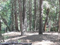 Photo of 0 Mojave River Road, Cedarpines Park, CA 92322 (MLS # 2151950)