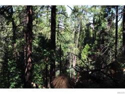 Photo of 0 Deer Run Road, Cedarpines Park, CA 92322 (MLS # 2151996)