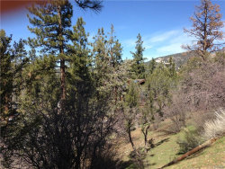Photo of 516 Marlowe, Big Bear City, CA 92314 (MLS # 3171397)