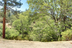 Photo of 0 Thrush Ct, Big Bear Lake, CA 92315 (MLS # 3173182)
