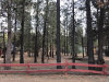 Photo of 2056 11th Lane, Big Bear City, CA 92314 (MLS # 3173429)