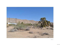 Photo of 56290 C Coyote Trail, Yucca Valley, CA 92284 (MLS # 3173751)