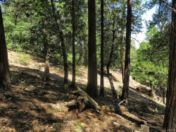 Photo of 0 Mojave River Road, Cedarpines Park, CA 92325 (MLS # 3173825)